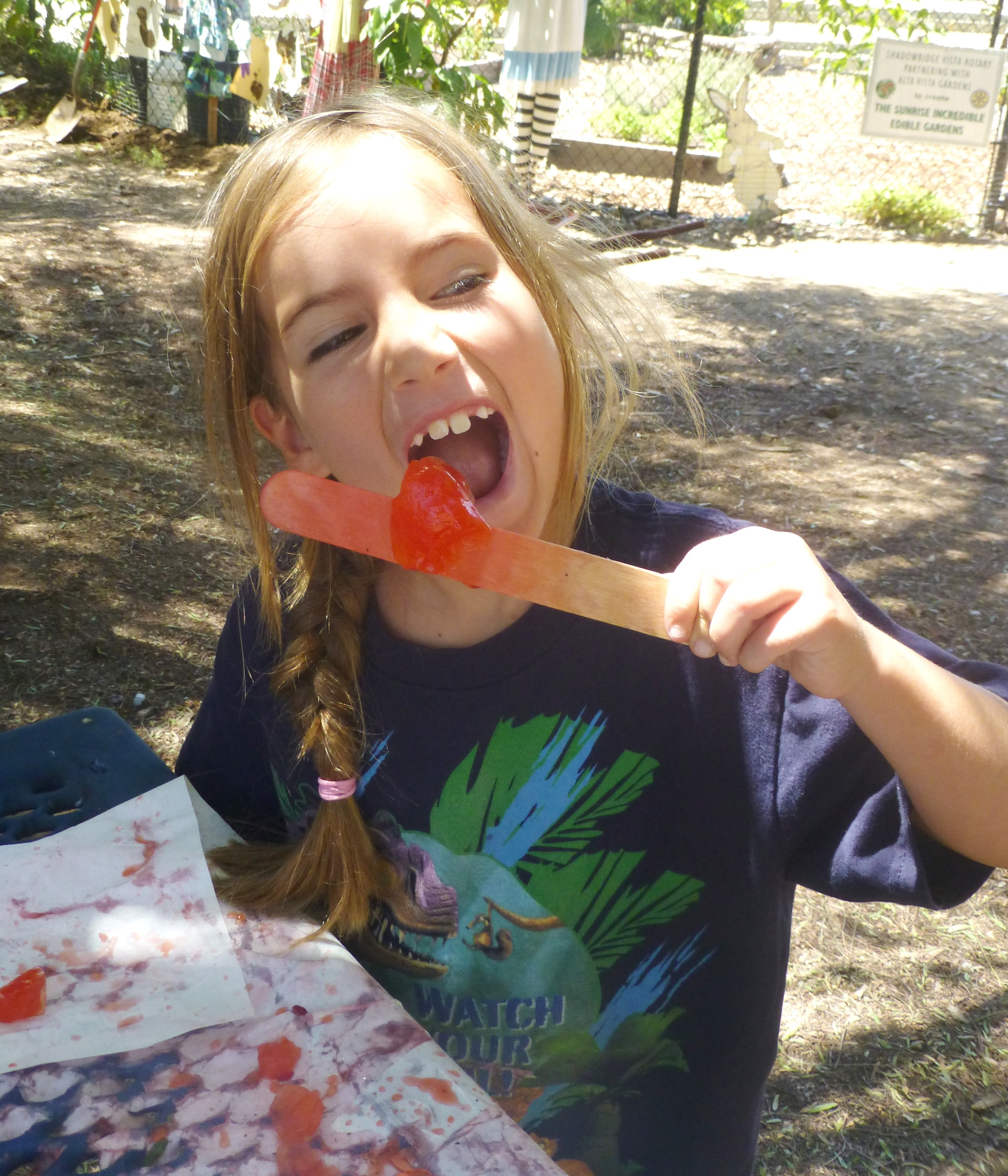 1 219 Amelia samples the ice popsicles